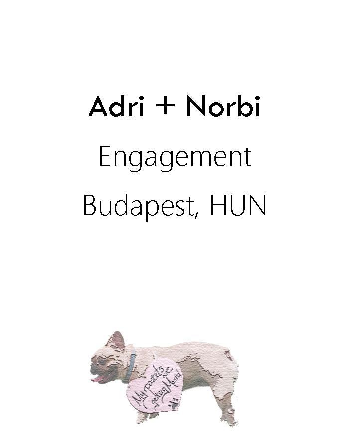 Adri+Norbi engagement 2015